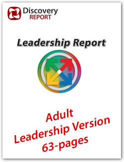discovery-report-leadership-extended-store2